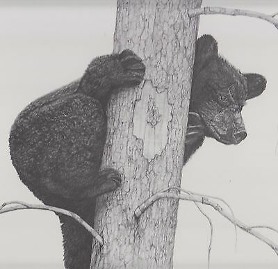 THE CLIMBER Black Bear Limited Edition S/N Print by Jason Haase ONLY 200 18 x 24