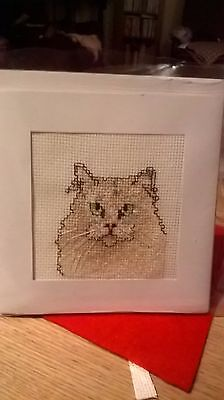 Completed cross stitch Card Cat (1)