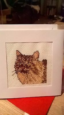Completed cross stitch Card Cat (3)