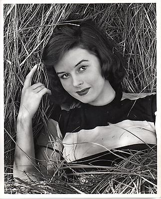 g766. RARE Original 1950's Photo Sexy Young Elaine Stewart Actress Film & Stage