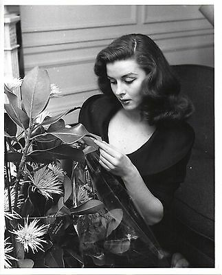 g793. RARE Original 1950's Photo Sexy Young Elaine Stewart Actress Film & Stage