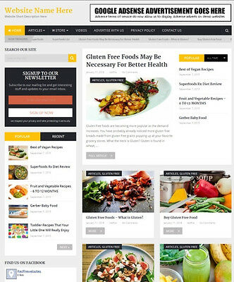 FOOD STORE - Complete, Ready Made Affiliate Website - Amazon+Google+Dropship!