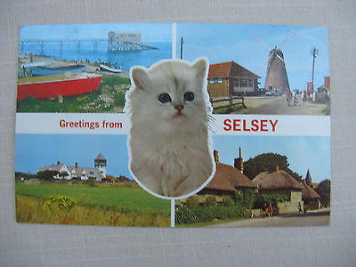 Postcard. Greetings from Selsey., West Sussex. Colour. c.1970's used