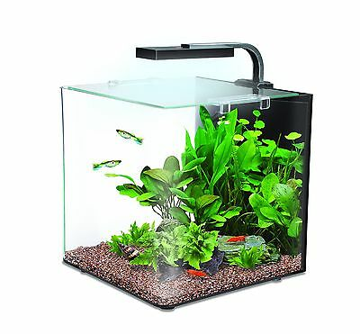 Interpet Nano LED Complete Aquarium Fish Tank Kit - 12 L 12 Litre