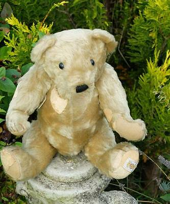 Old Original Nisbet Aloysius Bear 1980's With Labels