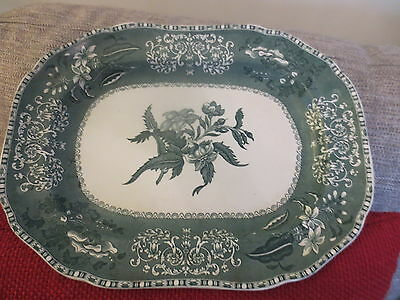 """Early SPODE GREEN CAMILLA Oval CHARGER c1833 on reverse  12"""" X 9"""""""