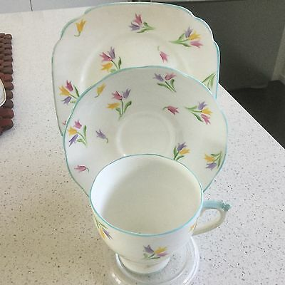 Roslyn Hand Painted Bone China Trio Made In England No 7287