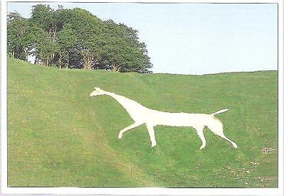 Cherhill, Wiltshire - White Horse - larger postcard