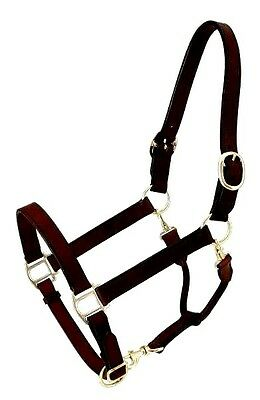 Royal King  Dark Brown Leather Stable/Grooming Halter Horse Tack Equine