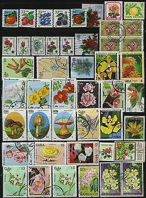 Plant Fruit Mushroom Flowers Thematic Stamps Usa Rsa Turkey Thailand Gb Cook Is