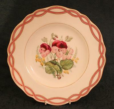 Antique c1851-55 ~ Floral Cabinet Plate ~ Copeland Spode ~ Hand Painted