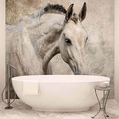 WALL MURAL PHOTO WALLPAPER XXL Horse Pony (1218WS)