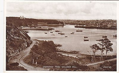 View From Gallows Hill & Boats, STORNOWAY, Isle Of Lewis
