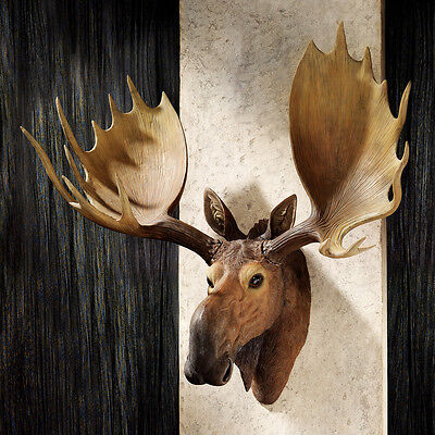 Wildlife Life-Like Alaskan Moose Wall Mounted Trophy Animal Sculpture Decor