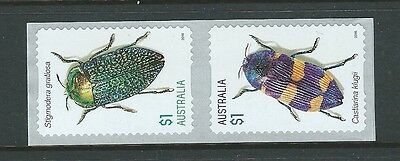 Australia 2016 Beetles Set Of 2 Self Adhesive Coil Unmounted Mint, Mnh