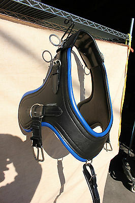 Brand new horse size horse drawn Comfy Fit Euro Brollar collar BLUE accents