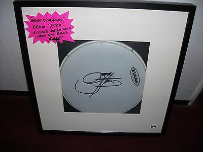 Gene Simmons Kiss Autographed Signed Concert Drum Skin In Matted Framed Display