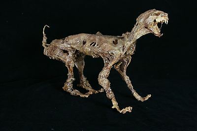 Corpsed Cat Skeleton - Life-Size Zombie Kitty - The Walking Dead Halloween Prop