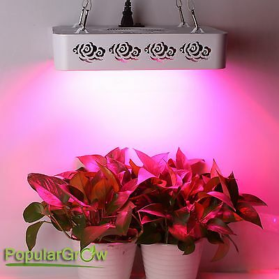 300W Full Spectrum LED Grow panel Light hydro indoor medical plants veg blooming