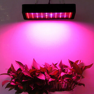 300W Full Spectrum LED Grow Panel Indoor Garden Veg Flower Medical Plants growth