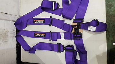 "Nascar 5 Point 3"" Harness Autograss Oval Purple"