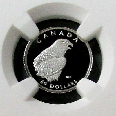 1996 Platinum Canada $30 Peregrine Falcon Ngc Proof 70 Ultra Cameo 1585 Minted