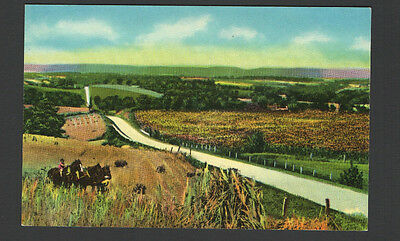 "Postcard Greetings from ""Famous"" Scio, Ohio  Kid working Horses in Field"