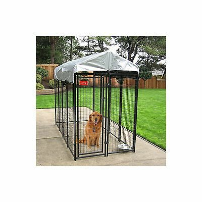 Chain Link Dog Kennel And Runs For Large Dogs Outdoor Playpen With Cover 4 X 8