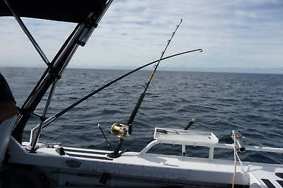 Fishing Outriggers 11 Ft 2 Pce  White Poles  / Bases And Rigging