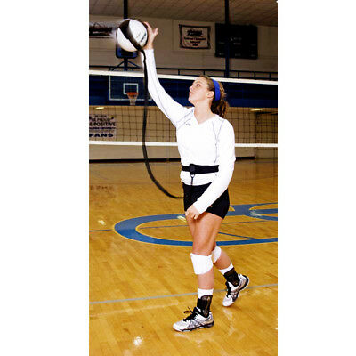 Authorized Retailer of Volleyball Pal