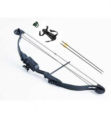 Stealth Light Adult Compound Shoot-Through Bow Kit
