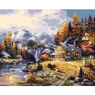 "16x20"" DIY Art Paint By Number Kits Acrylic Oil Painting Picture Print On Canvas"