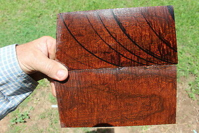 Ringed Gidgee Box Making or Saya Bookmatched Scales  #116