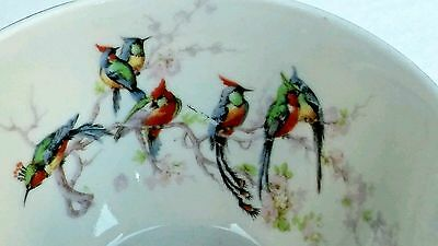 THEODORE HAVILAND LIMOGES FRANCE 1 cup Birds & Flowers