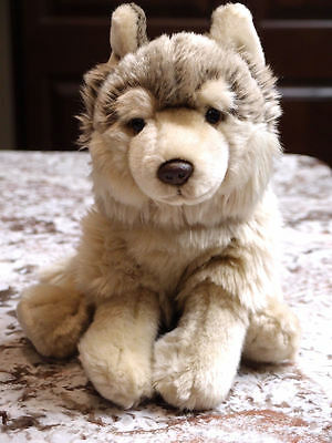 Webkinz Signature Timber Wolf Plush Toy  Actual Photos  **A REAL CUTIE**
