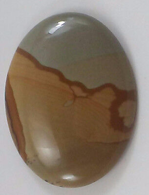 Owyhee Picture Jasper Cabochon/Cab Great For Wire Wrap Pendant Bolo Tie Polished
