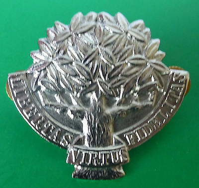 SOUTH AFRICA ARMY REGIMENT ORANGE FREE STATE OVS TREE 1980'S metal CAP BADGE