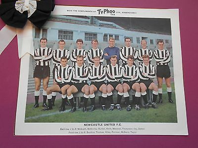 Typhoo Famous Football Clubs Newcastle United Series 1 1964 Excellent
