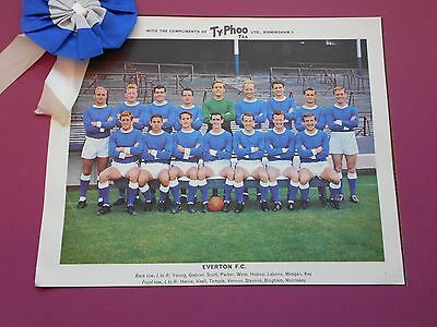 Typhoo Famous Football Clubs Everton Series 1 1964 Excellent Condition