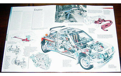 Peugeot 205 T16 Fold-out Poster + Cutaway drawing