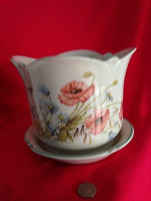 Royal Winton Poppy Plant Pot and Saucer Vintage