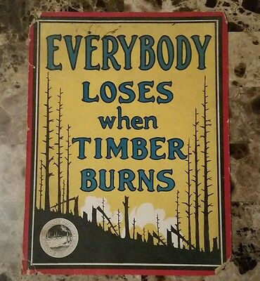 Antique PA Department of Forests & Waters Color Cardboard Ad Sign TIMBER BURNS