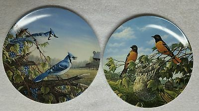 1991 Bradford Exchange Birds Of The Seasons Issues 4 & 5 By Sam Timm