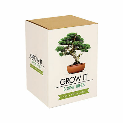 Grow Your Own Bonsai Trees Gift Box - Gift - Gadgets - New - Sealed