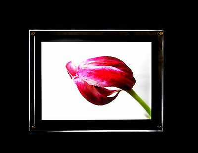LED Bilderrahmen A2 Single Side Crystal light box Acrylglas A++ Leuchtrahmen