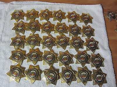 Special Security Officer Gold Finish 7 Point Star Badge. FREE SHIPPING.