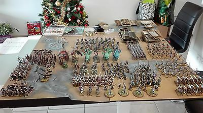 Warhammer Armée Elfes Noirs Pro painted