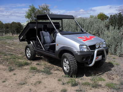 Rising Sun Buggies side by side UTV buggy 4 cyl 1300cc tip option available