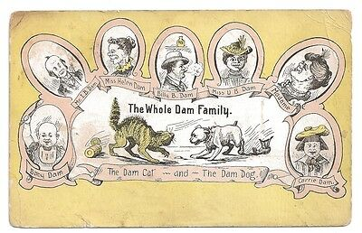 vintage whole dam family postcard c1900s dog and cat fight