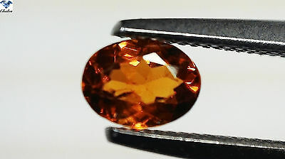 1x Spessartin Granat - Oval facettiert 0,32ct. 3,6x4,9mm (1452C)